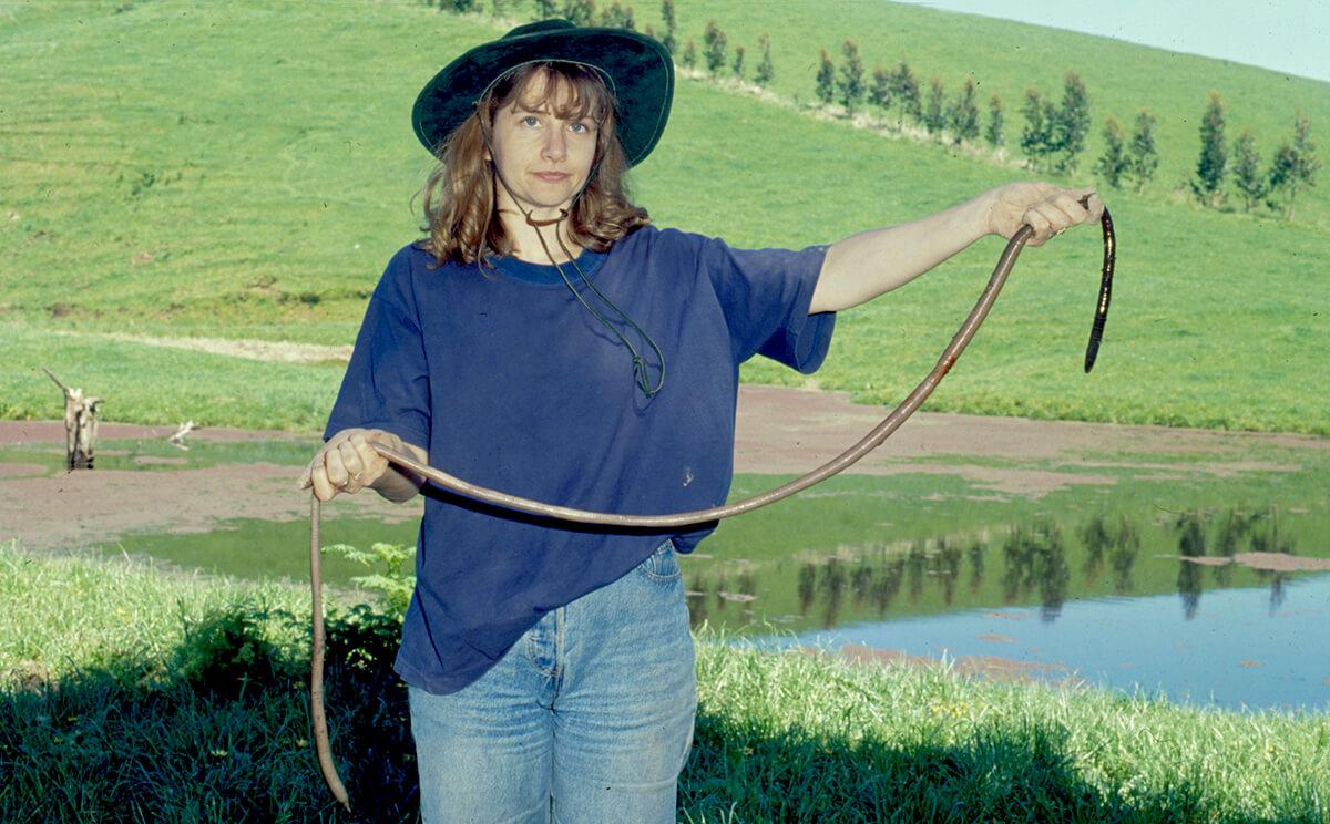 woman-holding-a-giant-gippsland-earthworm-28893-20130.jpg