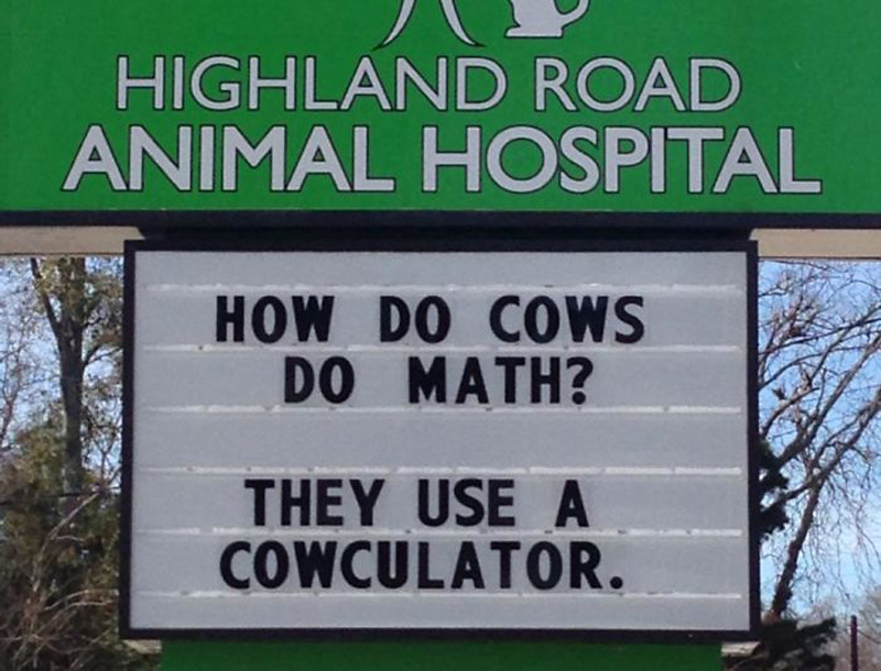 funny-veterinarian-signs- cows
