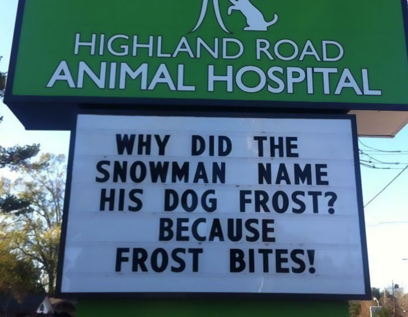 funny-veterinarian-signs- frost bites