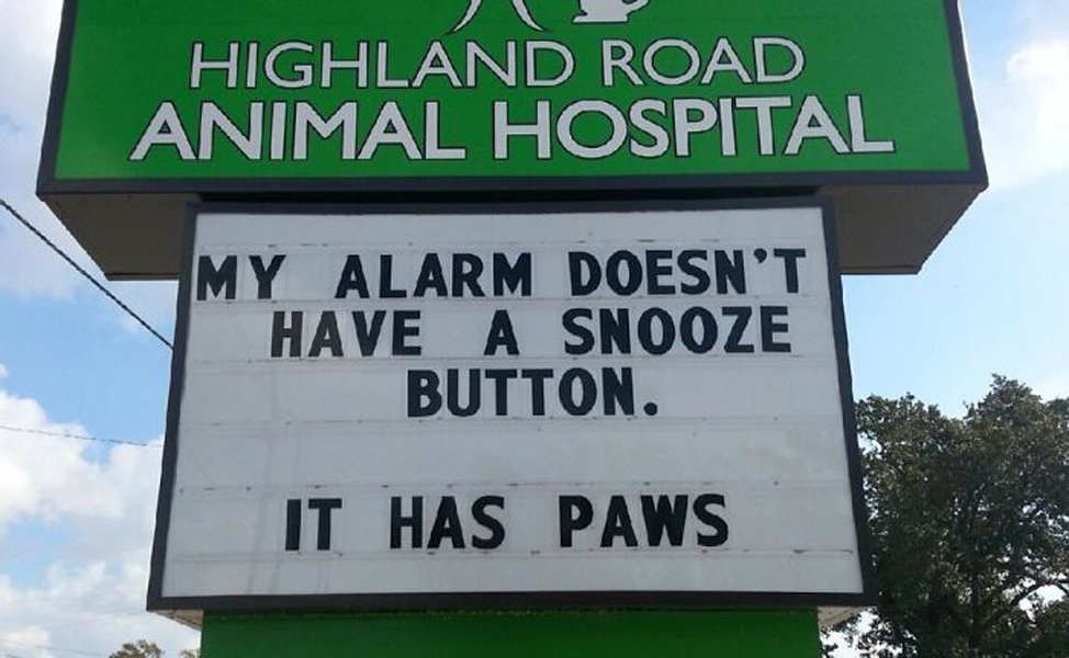 funny-veterinarian-signs about paws and alarms