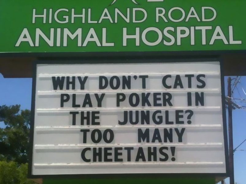 funny-veterinarian-signs cheetahs