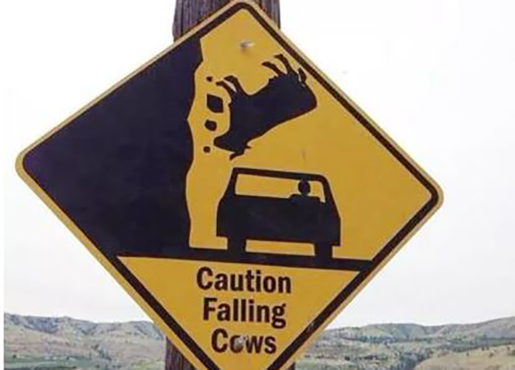 Falling cow sign