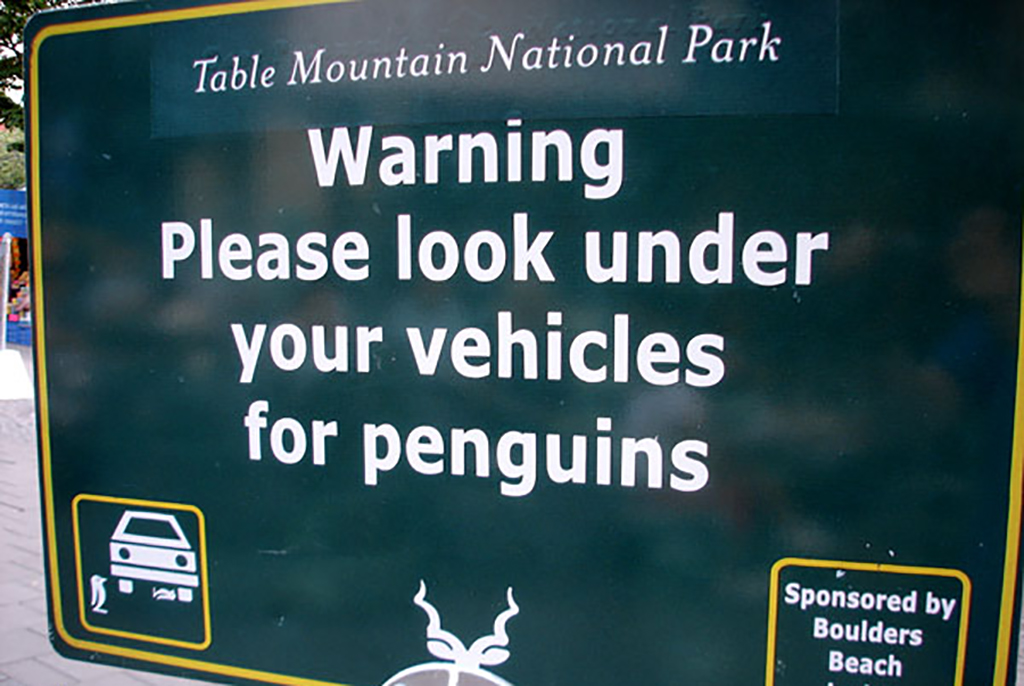 Watch for penguins sign