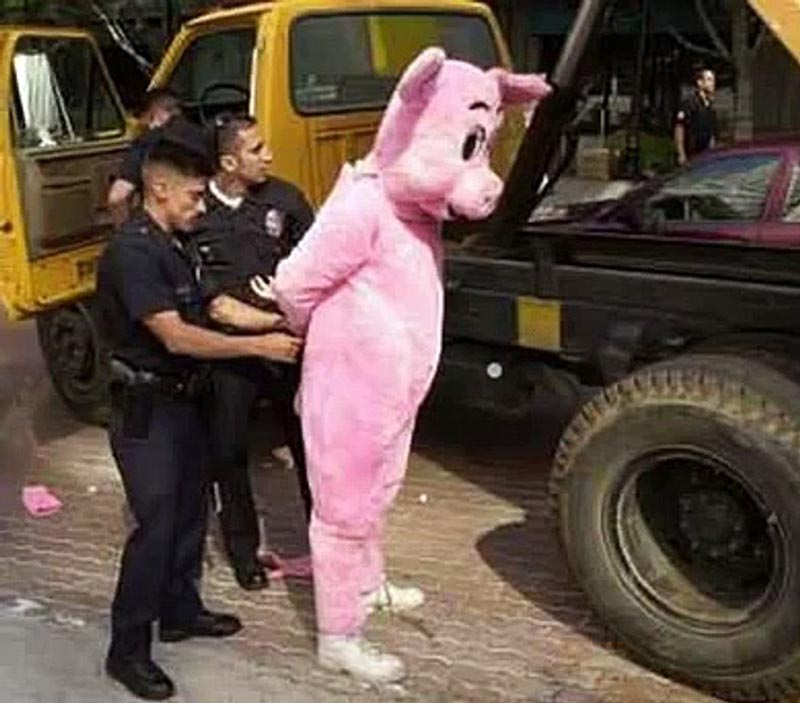 An officer handcuffs someone who is in a pig costume.