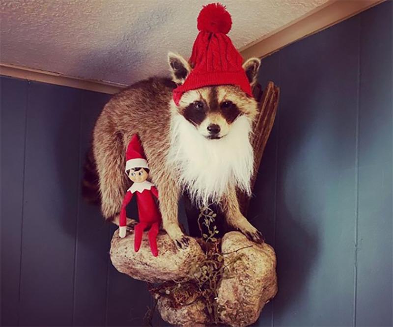 A stuffed racoon is dressed like Santa.