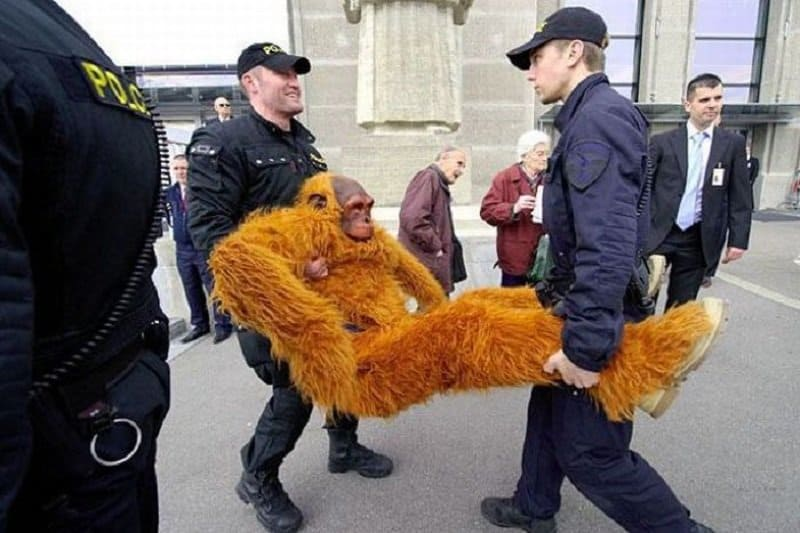 Two officer carry the full weight of a someone who is in a monkey costume.
