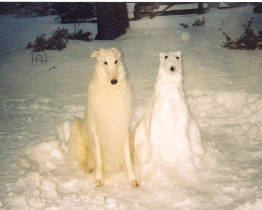 A borzoi stands next to a snowzoi of himself.
