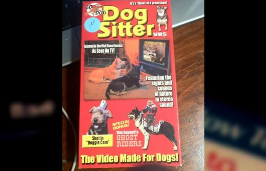 Who Can Forget The Dog Sitter