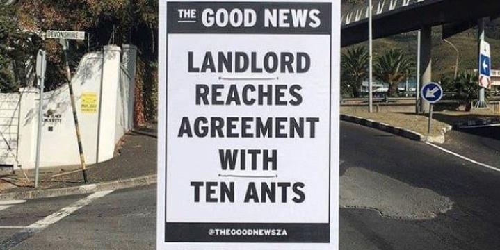 Ten Ants