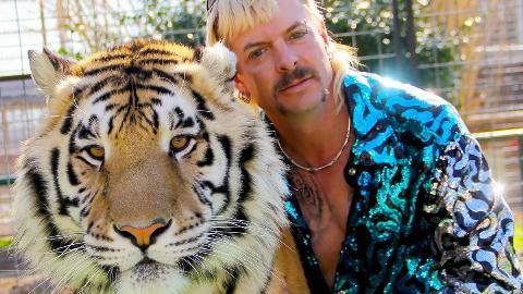 Tiger-kinng