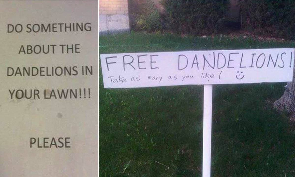 In response to a complaint note, a neighbor set up a sign that says