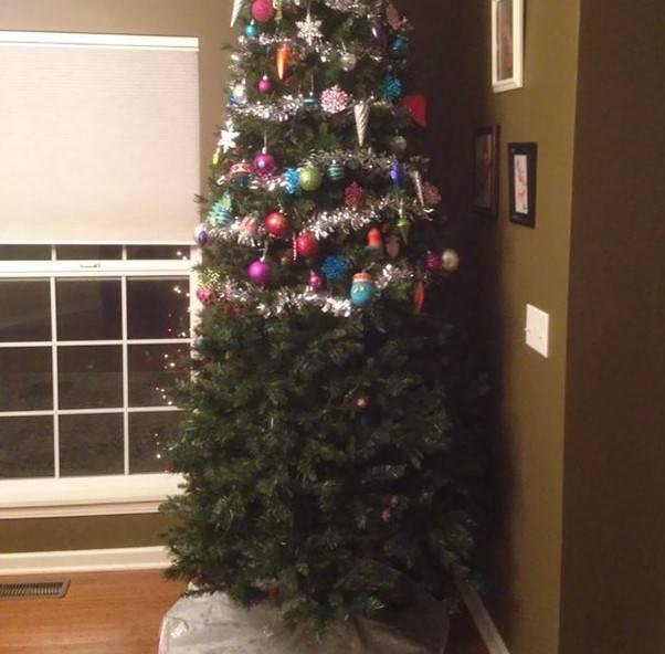 christmas-tree-pet-16