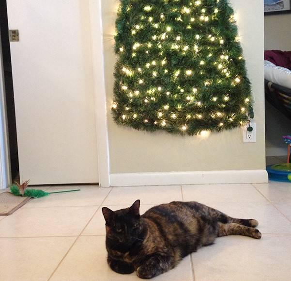 christmas-tree-pet-17