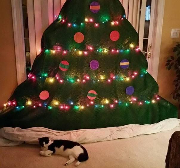 christmas-tree-pet-33