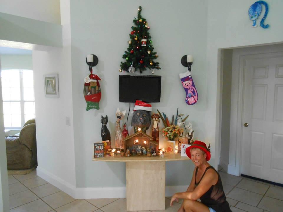 christmas-tree-pet-34