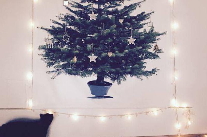 christmas-tree-pet-36