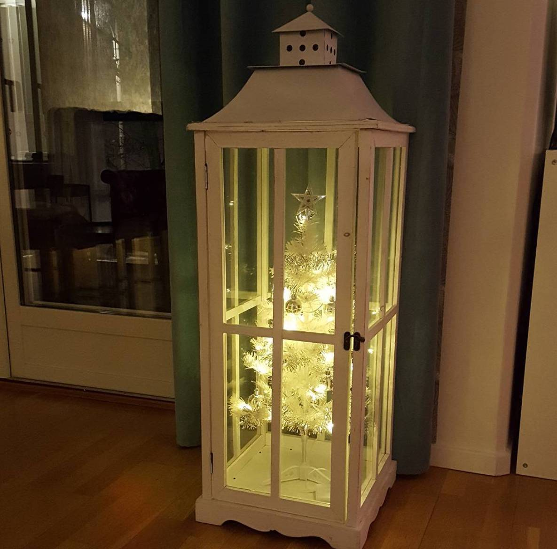 christmas-tree-pet-4