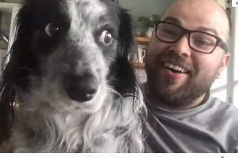 An owner shows his dog on his work Zoom call.